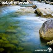 Babbling Brook album artwork