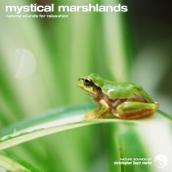 Mystical Marshland album artwork