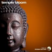 Temple Bloom album artwork