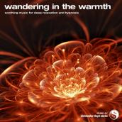 Wandering in the Warmth album artwork