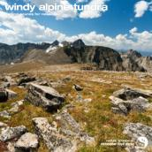 Windy Alpine Tundra album artwork